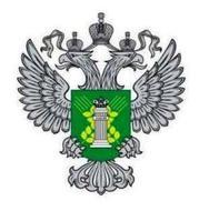 """Около 130 кг копченой рыбы задержали в аэропорту """"Домодедово"""""""