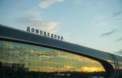 Сотрудники МВД России изъяли золотые слитки в одном из столичных аэропортов